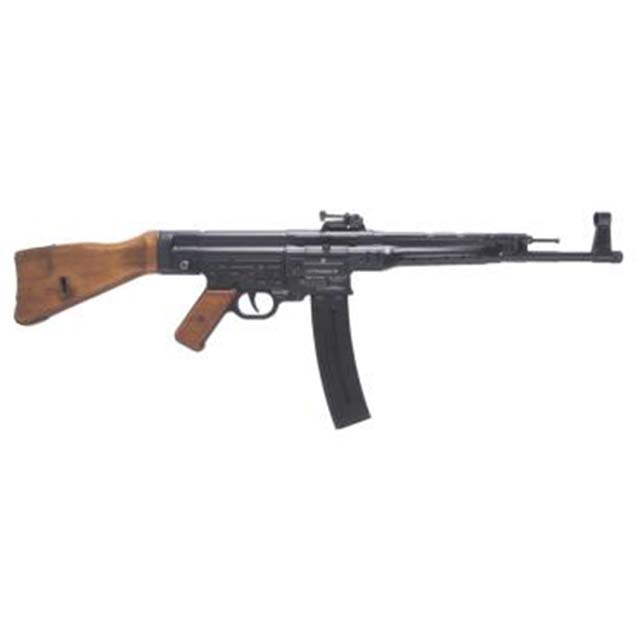 Top 5 choices for .22 Semi-Auto rifle for SHTF situations - .22 Rifle/Rimfire Discussion